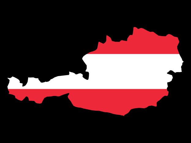 VIN Check Austria history