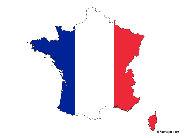 VIN Check France history