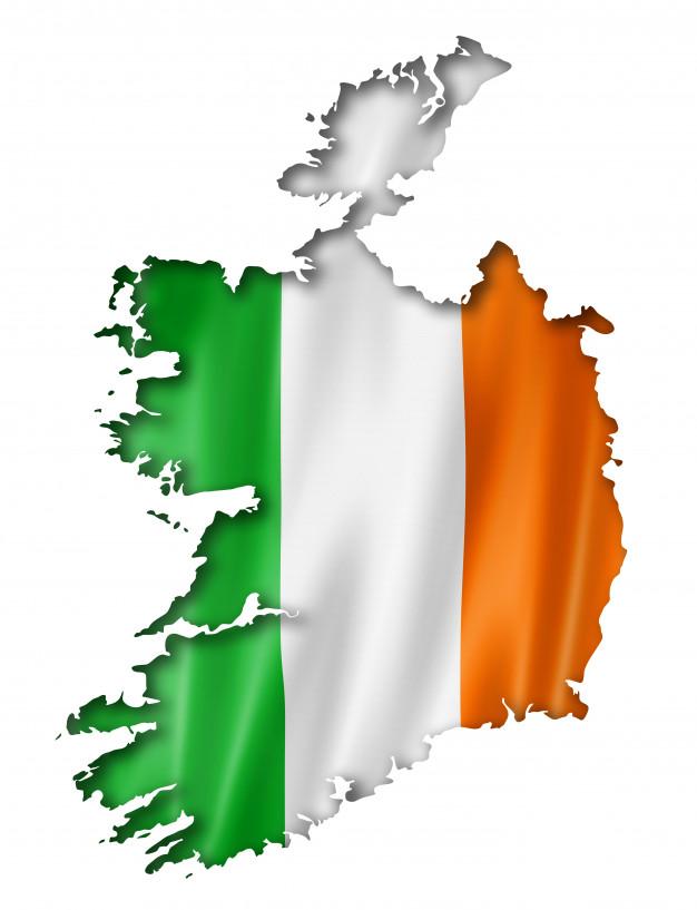 VIN Check Ireland History