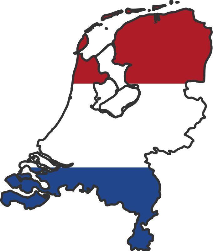 VIN Check Netherlands History