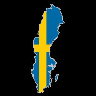 VIN Check Sweden history