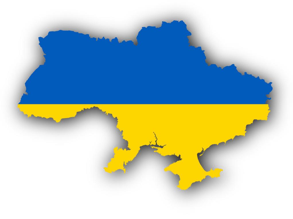 VIN Check Ukraine History